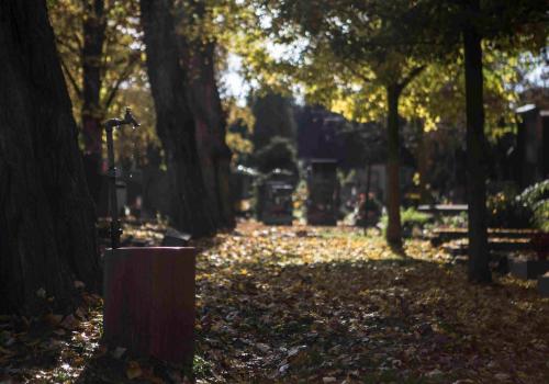 Pražské hřbitovy: seznam, otevírací doba, zajímavosti
