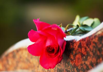 Slovník pojmů: pohřby a pohřebnictví